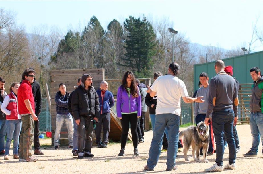 Cursos Lord-Can - Adiestramiento canino (1)